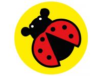 Ladybird school social distancing flo...