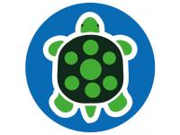 Turtle school social distancing floor...