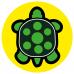 Turtle school social distancing floor graphics sticker
